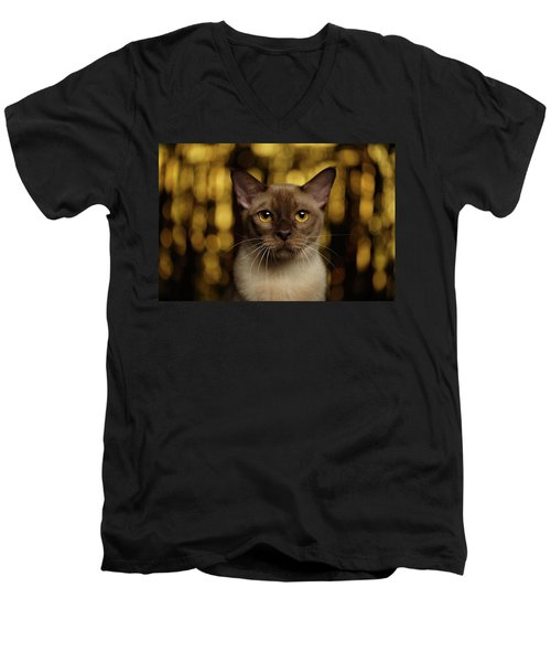 Closeup Portrait Burmese Cat On Happy New Year Background Men's V-Neck T-Shirt