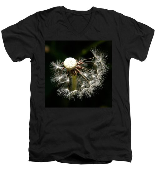 Dandelion Men's V-Neck T-Shirt by Ralph A  Ledergerber-Photography