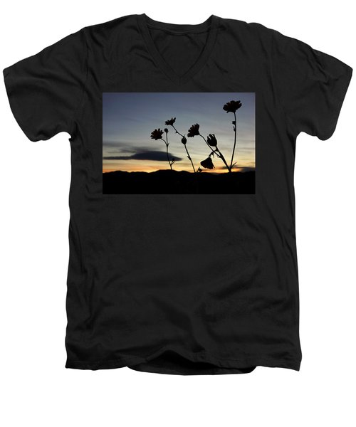 Death Valley Superbloom 104 Men's V-Neck T-Shirt by Daniel Woodrum
