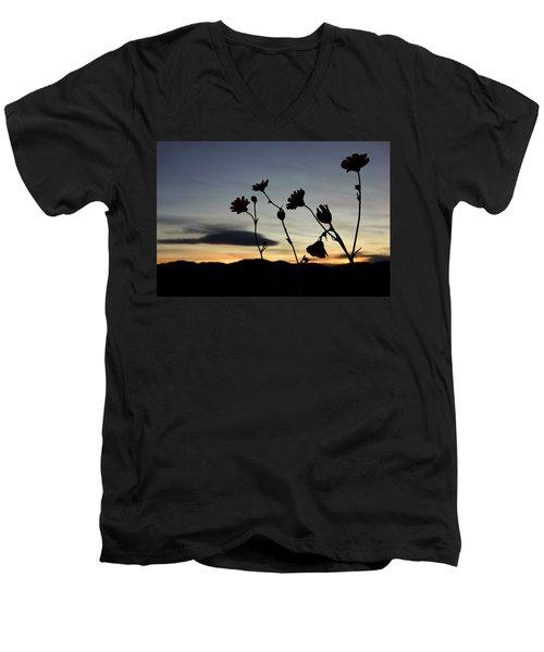 Death Valley Superbloom 104 Men's V-Neck T-Shirt