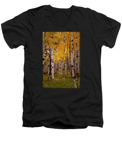 Fall At Snowbowl Men's V-Neck T-Shirt by Tom Kelly