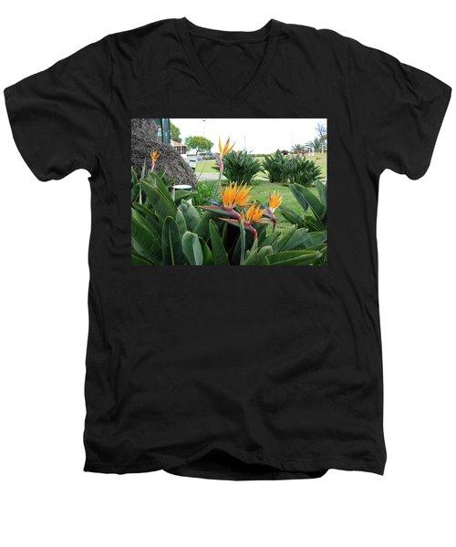 Funchal Maderia Men's V-Neck T-Shirt