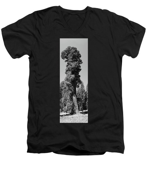 Giant Sequoia, Sequoia Np, Ca Men's V-Neck T-Shirt