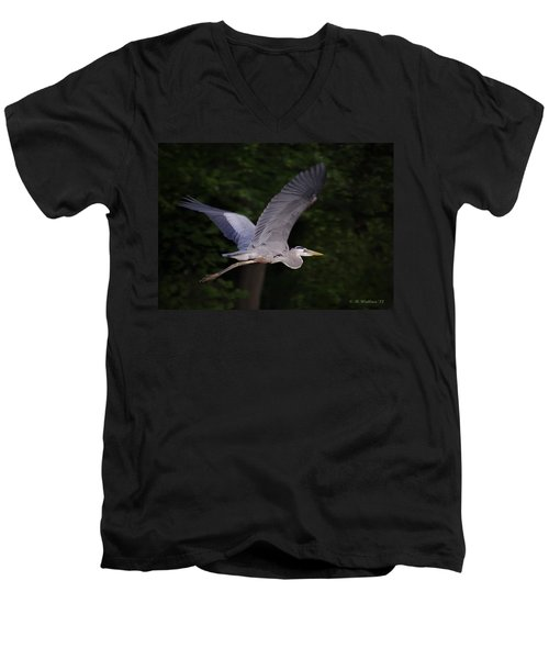 Great Blue Heron In Flight Men's V-Neck T-Shirt by Brian Wallace