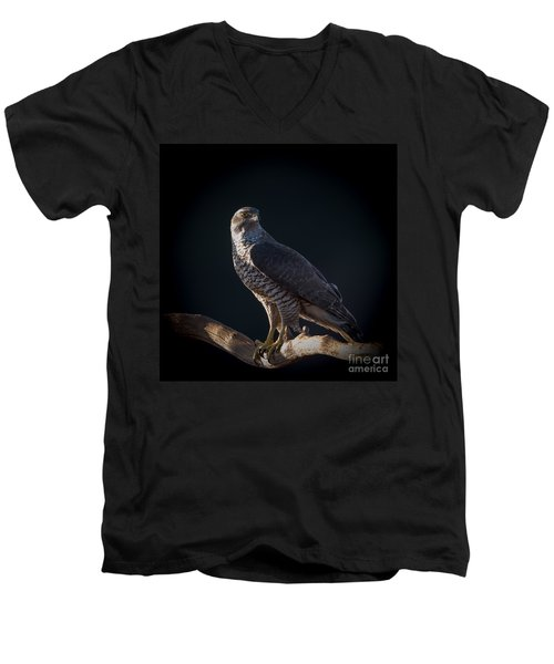 Hawk-eye Men's V-Neck T-Shirt