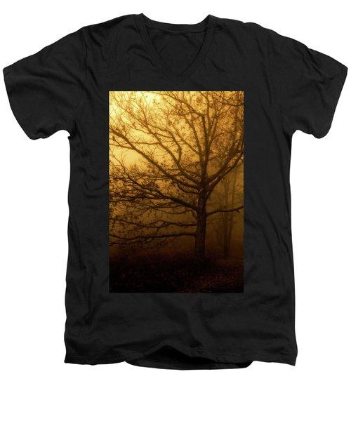 Hazy Daze Men's V-Neck T-Shirt