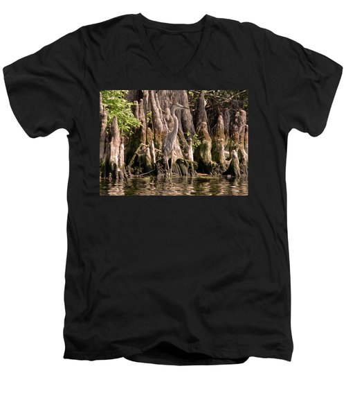 Heron And Cypress Knees Men's V-Neck T-Shirt