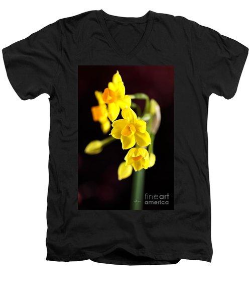 Jonquil Men's V-Neck T-Shirt