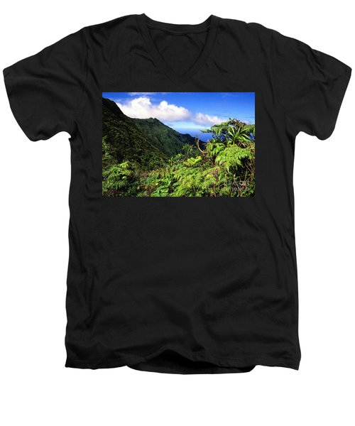 Koolau Summit Trail Men's V-Neck T-Shirt