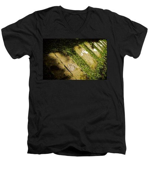 Light Footsteps In The Garden Men's V-Neck T-Shirt