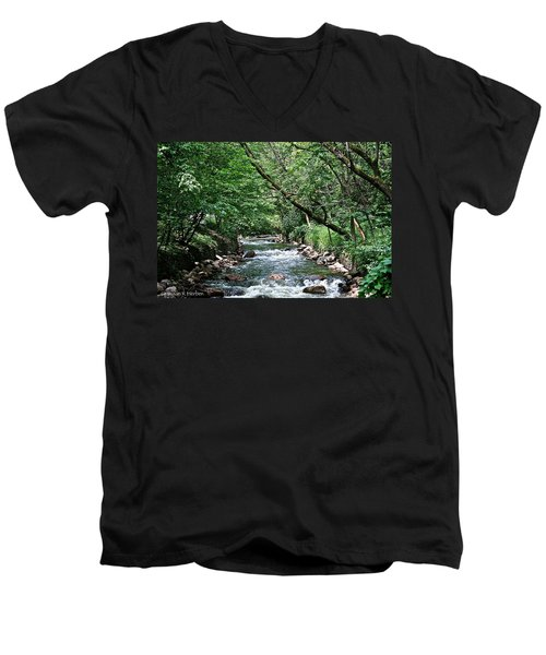 Minnehaha Creek Men's V-Neck T-Shirt