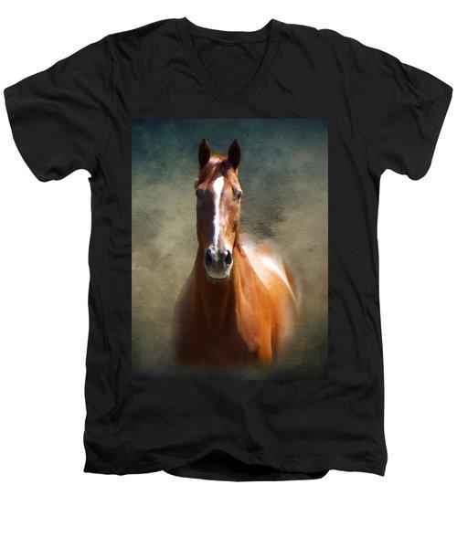 Misty In The Moonlight P D P Men's V-Neck T-Shirt