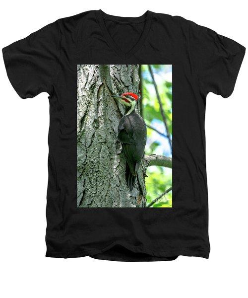 Mr. Pileated Woodpecker Men's V-Neck T-Shirt