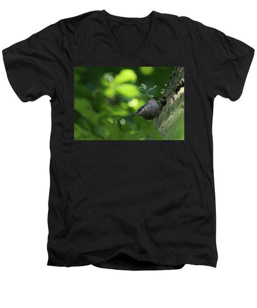 Nuthatch Men's V-Neck T-Shirt
