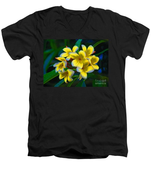 Men's V-Neck T-Shirt featuring the photograph 1- Plumeria Perfection by Joseph Keane
