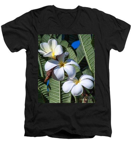 Plumeria Men's V-Neck T-Shirt by Roselynne Broussard