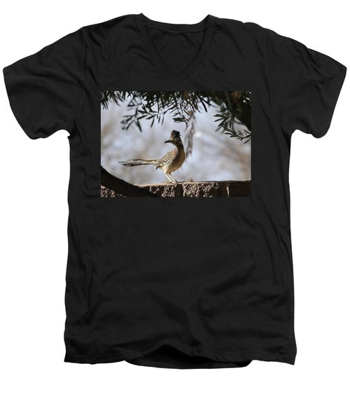 Roadrunner Men's V-Neck T-Shirt