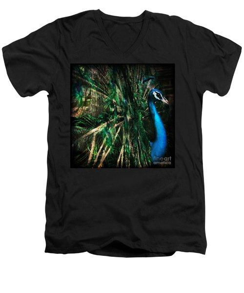 Splendour Men's V-Neck T-Shirt
