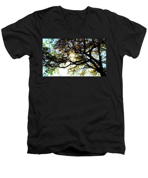Sunday Afternoon Men's V-Neck T-Shirt by Julie Hamilton