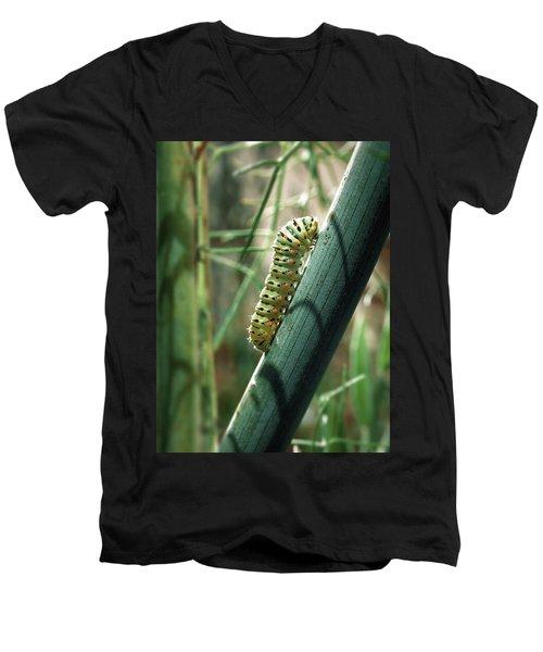 Men's V-Neck T-Shirt featuring the photograph Swallowtail Caterpillar by Meir Ezrachi