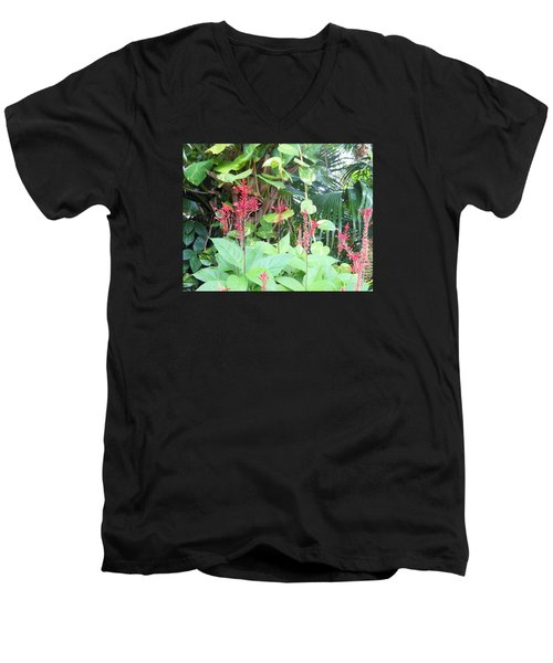 Men's V-Neck T-Shirt featuring the photograph Tropical Flowers by Kay Gilley