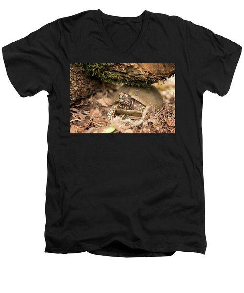 Turtle Town Men's V-Neck T-Shirt