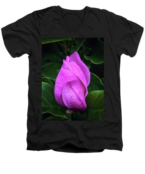 Unfolding Men's V-Neck T-Shirt