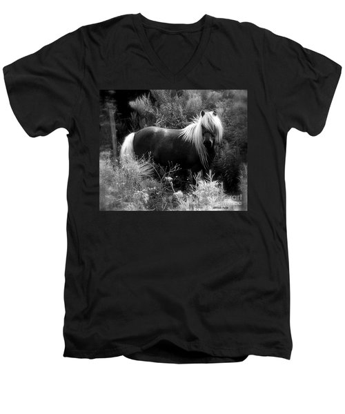 Vanity Men's V-Neck T-Shirt