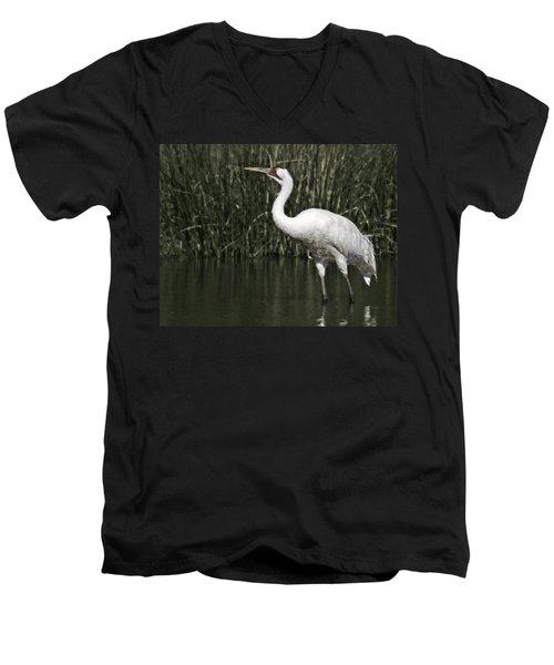 Whooping Crane Men's V-Neck T-Shirt