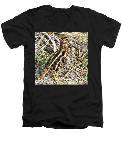 Wilson's Snipe Men's V-Neck T-Shirt