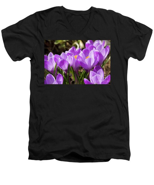 Purple Crocuses Men's V-Neck T-Shirt by Irina Afonskaya