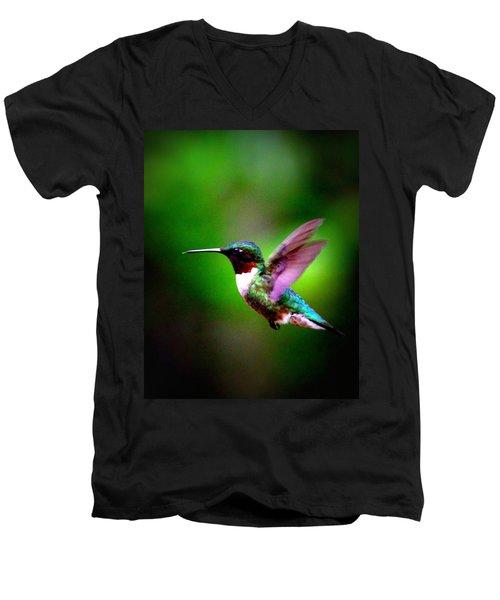 1846-007 - Ruby-throated Hummingbird Men's V-Neck T-Shirt
