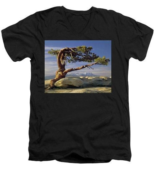 1m6701 Historic Jeffrey Pine Sentinel Dome Yosemite Men's V-Neck T-Shirt