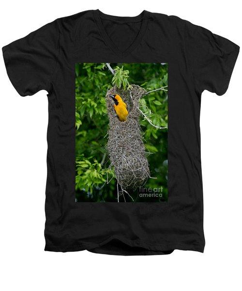 Altamira Oriole Men's V-Neck T-Shirt