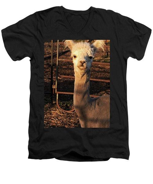 Cria Men's V-Neck T-Shirt