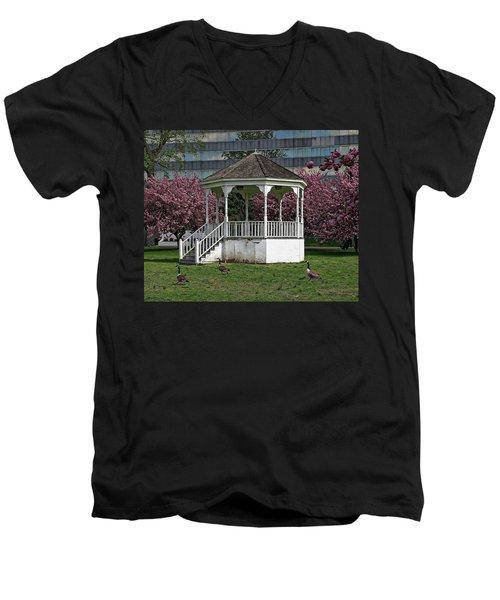 Gazebo In The Park Men's V-Neck T-Shirt