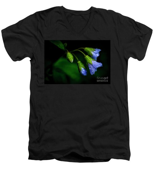 Men's V-Neck T-Shirt featuring the photograph Jacobs Ladder by Thomas R Fletcher