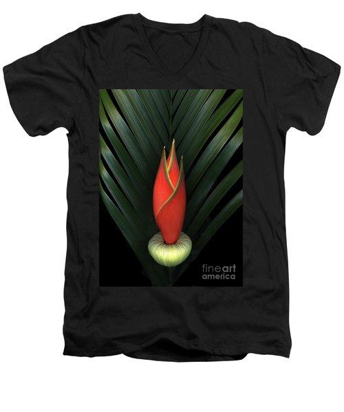 Palm Of Fire Men's V-Neck T-Shirt by Christian Slanec
