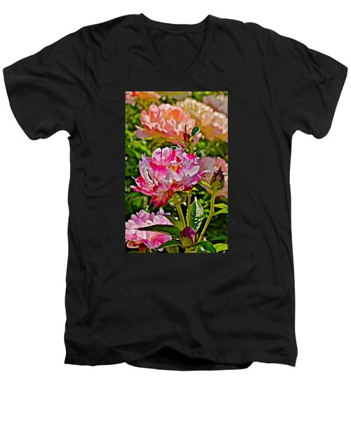 2015 Summer's Eve At The Garden Candy Stripe Peony Men's V-Neck T-Shirt