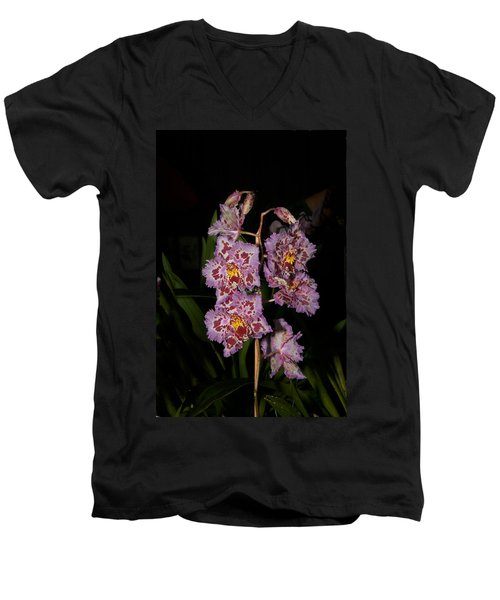 Cattleya Style Orchids Men's V-Neck T-Shirt