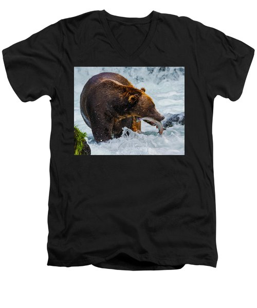 Alaska Brown Bear Men's V-Neck T-Shirt