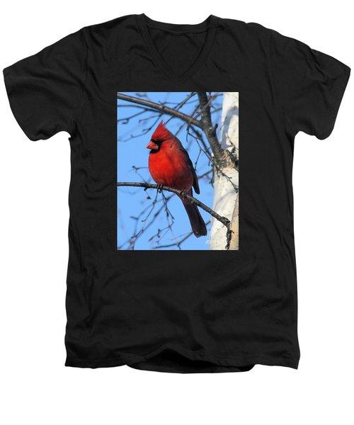Northern Cardinal Men's V-Neck T-Shirt by Ricky L Jones