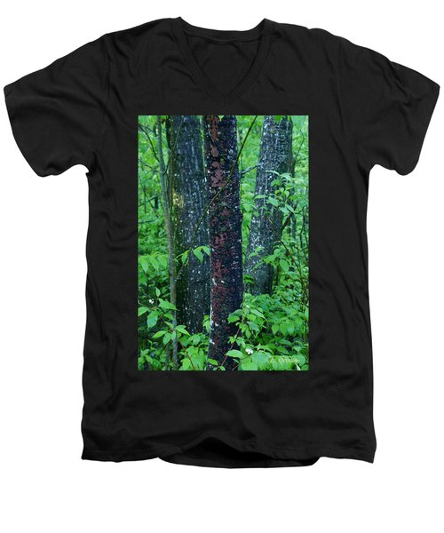 3 Trees Men's V-Neck T-Shirt