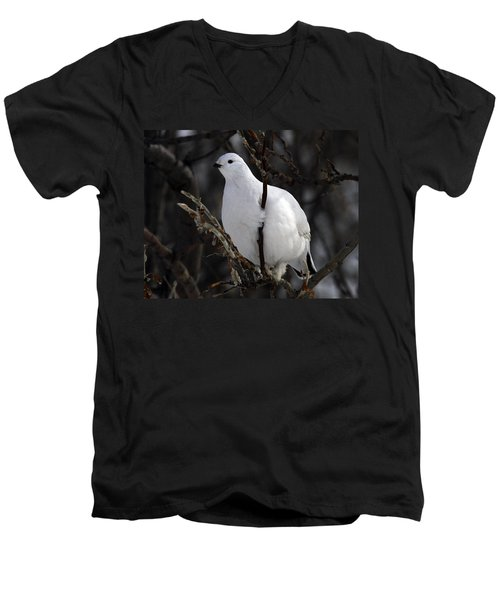 Willow Ptarmigan Men's V-Neck T-Shirt