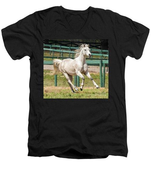 Arabian Horse Running Men's V-Neck T-Shirt