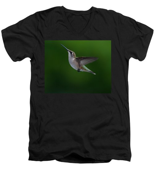 Female Ruby Throated Hummingbird Men's V-Neck T-Shirt