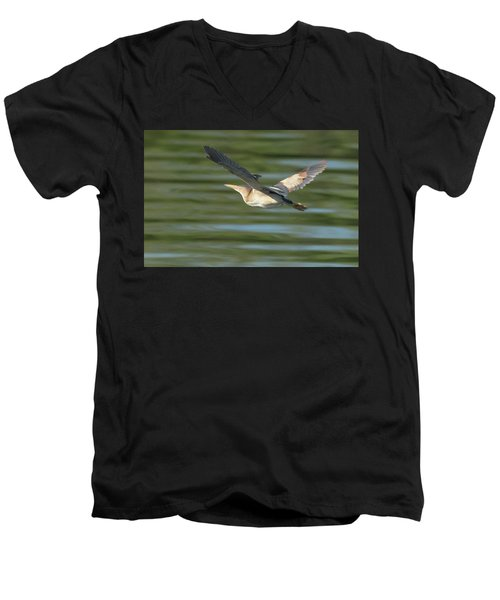 Least Bittern Men's V-Neck T-Shirt by Tam Ryan