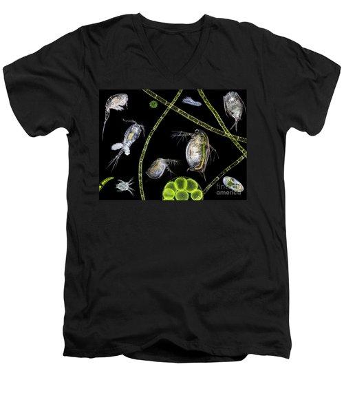 Pond Life Men's V-Neck T-Shirt