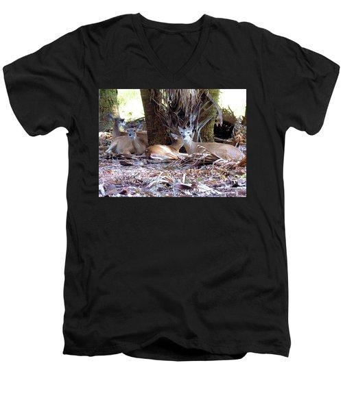 4 Wild Deer Men's V-Neck T-Shirt by Rosalie Scanlon