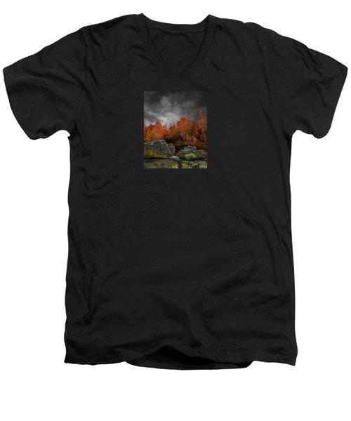 4004 Men's V-Neck T-Shirt by Peter Holme III